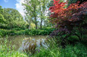 tuin kleur Huize Eigen WIjze
